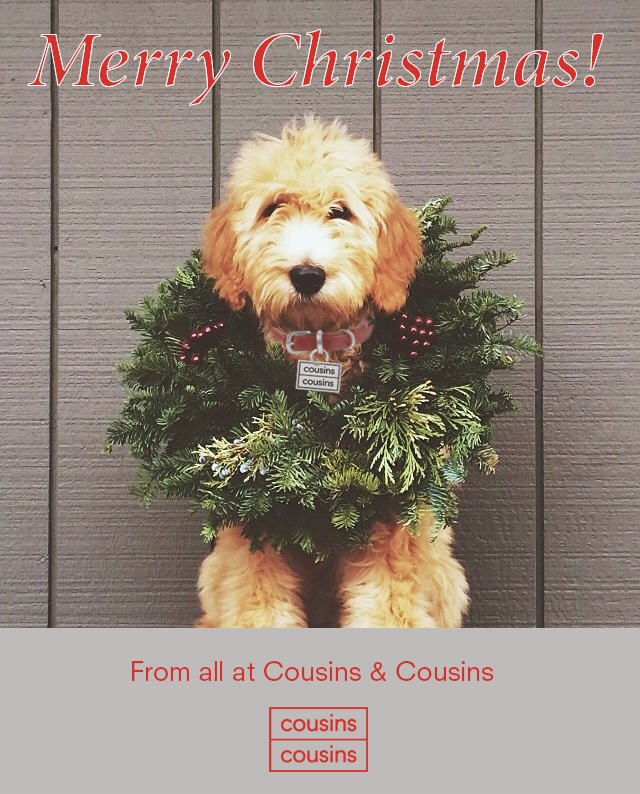 Merry Christmas from C&C and our office dog Clover!